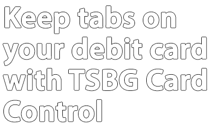 TSBG-card-control.png